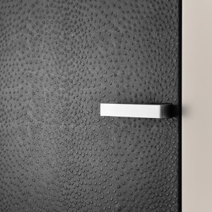 DOORS WITH SPECIAL SURFACES