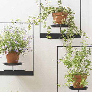 Plant supports and shelves