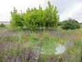 Vogt Landschaftsarchitekten AG-Kvadrat | Glacial Expectations -2