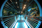ARCHiLUCE LiGHTiNG DESiGN-Genoa Aquarium -1