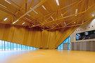 VOLTOLINI architectures sarl-Espace Saint Marc -2