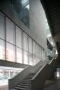 Grafton Architects-Università Luigi Bocconi -3