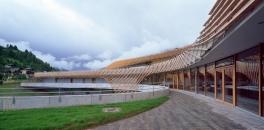 Behnisch Architekten-Römerbad Spa Baths -5
