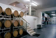 Architects Collective ZT GmbH-Erich Sattler Winery -3