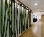 klm architekten-Zahnarztpraxis Edelweiss -2