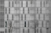 Dosmasuno Arquitectos-Carabanchel Project -5