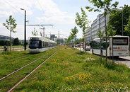 Kai Flender-Glattalbahn -1