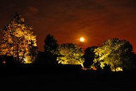 DALD - David Atkinson Lighting Design-Private Garden, Essex -1