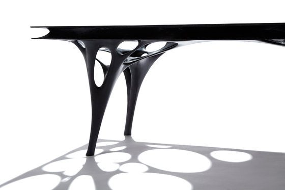 Fabric Table R (Fabric Table Radiolaria) de Il Hoon Roh | Prototipos