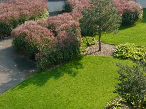 Charlotte Garden di SLA | Giardini