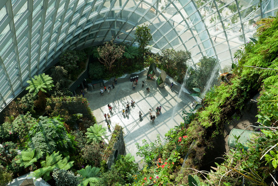 Cooled Conservatories at Gardens by the Bay di Wilkinson Eyre Architects | Musei
