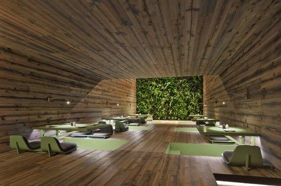 Restaurante tori tori de rojkind arquitectos restaurantes for Restaurante arquitectura