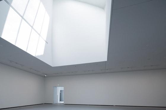 Fondation louis vuitton di frank o. gehry musei