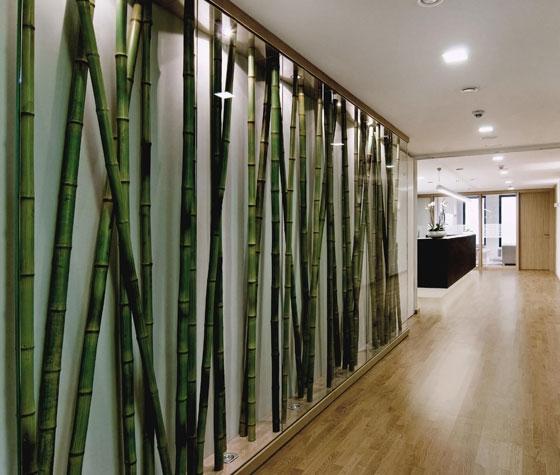 edelweiss von klm architekten   praxen, Innenarchitektur ideen