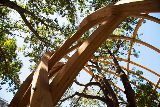 Arch for Arch by Snøhetta | Installations