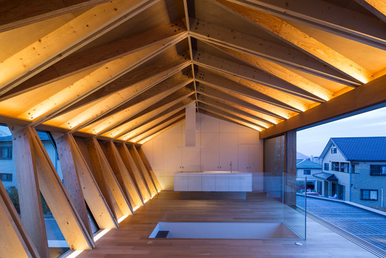 WRAP by APOLLO Architects & Associates   Detached houses