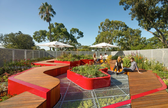 Burnley Living Roofs by HASSELL | Universities