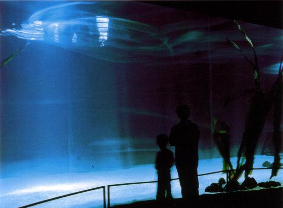 Genoa Aquarium by ARCHiLUCE LiGHTiNG DESiGN | Museums