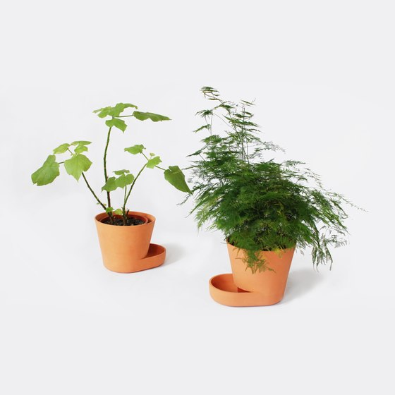 Uli Budde-Plant Pot