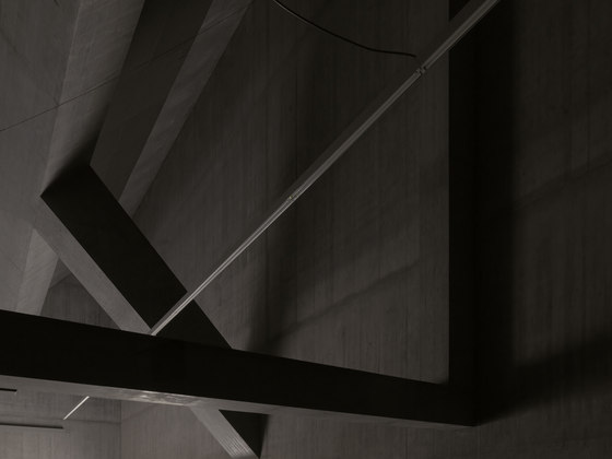 Plantahof Auditorium by Valerio Olgiati | Schools