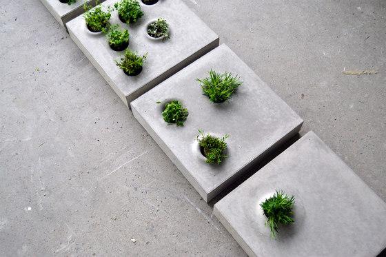Grey to green by Caroline Brahme   Prototypes