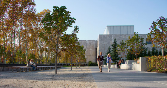 The Barnes Foundation by OLIN | Parks