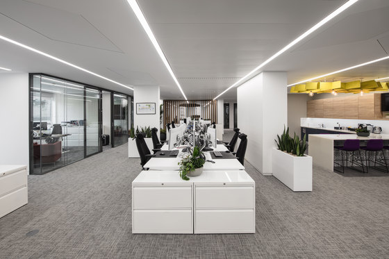 Financial Services Company by align | Office facilities