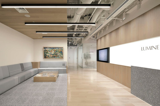 Lumine by Canuch | Office facilities
