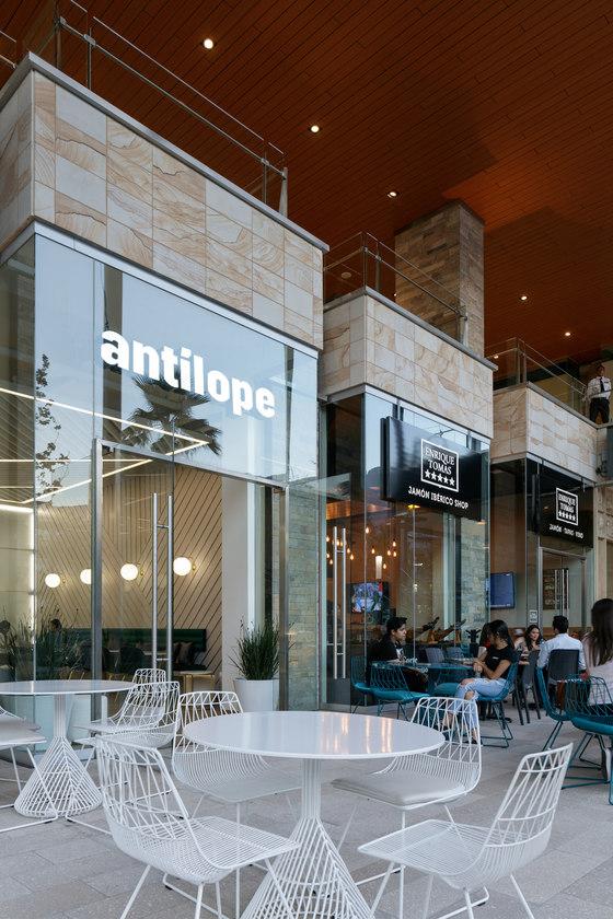 Antilope von Mass Operations | Café-Interieurs