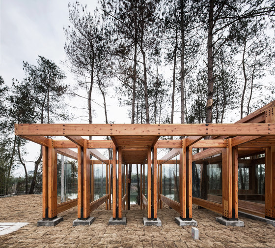 Pine Park Pavilion by DnA Design and Architecture | Installations