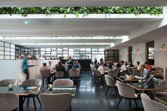 Restaurant, Bar & Waiting Area | Le Meridien Vienna von FREIFRAU MANUFAKTUR | Herstellerreferenzen