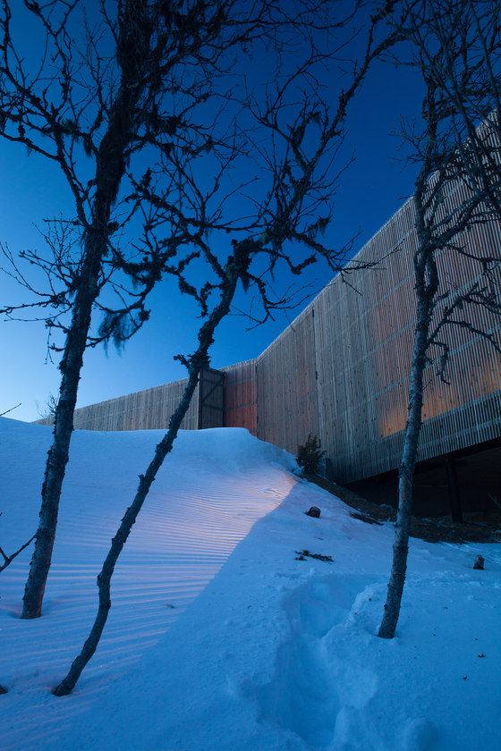 Cabin Kvitfjell by Lund Hagem Architects | Detached houses