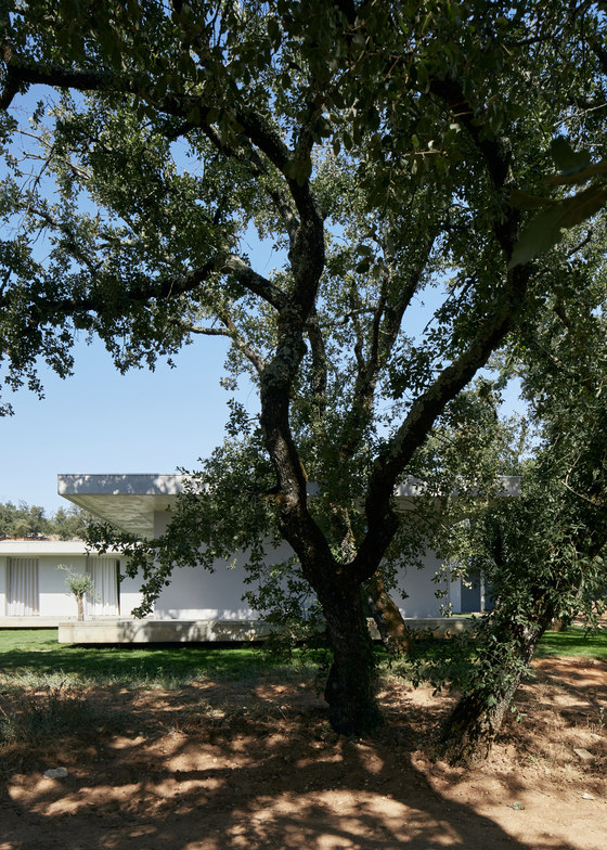 CASA FANU by Bruno Dias Arquitectura | Detached houses
