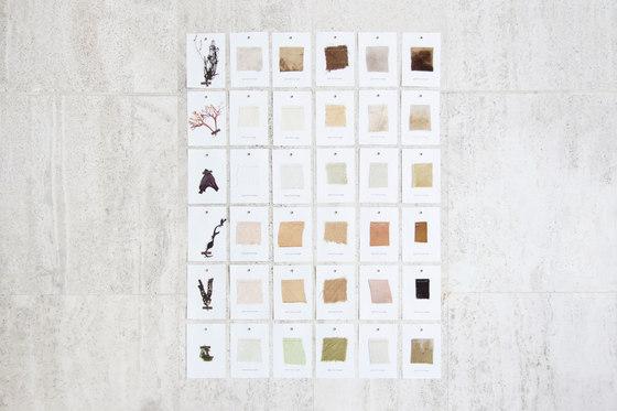 Sea Me Collection de Studio Nienke Hoogvliet | Prototipos