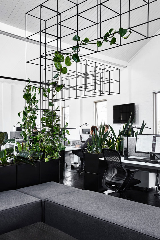 Candlefox HQ by Tom Robertson Architects | Office facilities