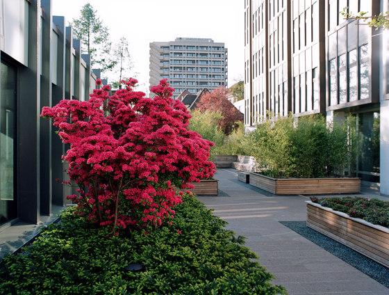 ETH Zurich by Enea | Gardens