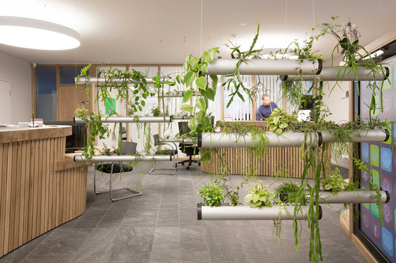 Reconstruction office spaces by Pendularis | Manufacturer references