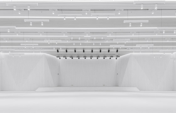 Multi-Function Hall in Central Academy of Fine Arts by Architecture School of CAFA | Schools