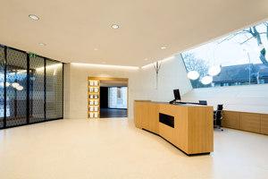 Raiffeisenbank Villa Rosenheim | Bürogebäude | moos. giuliani. herrmann. architekten.