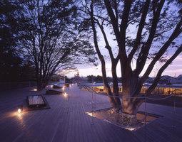 Fuji Kindergarten | Guarderías/Jardín de Infancia | Tezuka Architects