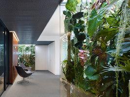 Phoenix Real Estate Frankfurt |  | Ippolito Fleitz Group