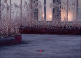 Charlotte Garden   Gardens   SLA