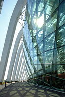 Cooled Conservatories at Gardens by the Bay | Musei | Wilkinson Eyre Architects