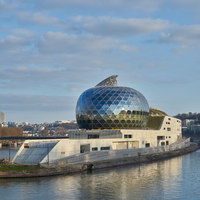 La Seine Musicale | Auditorium | Shigeru Ban Architects