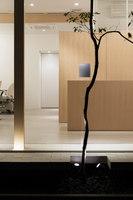 Folm arts | Negozi | Tsubasa Iwahashi Architects