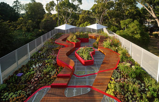 Burnley Living Roofs | Universités | HASSELL
