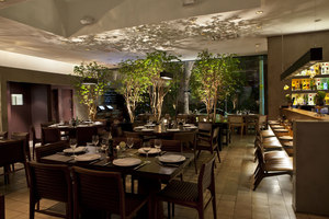Manish Restaurant | Restaurants | Acenda