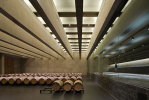 Institutional Winery 'La Grajera' (La Rioja) | Constructions industrielles | Virai Arquitectos