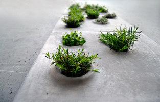 Grey to green | Prototypen | Caroline Brahme