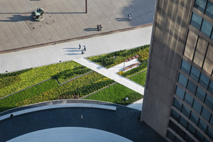 Nathan Phillips Square | Jardines | Hoerr Schaudt Landscape Architects